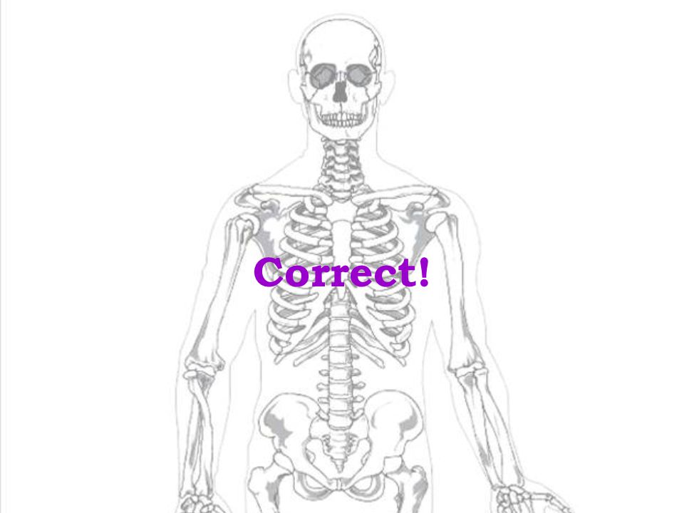 10 No! The Answer is Compact Bone ! Continue