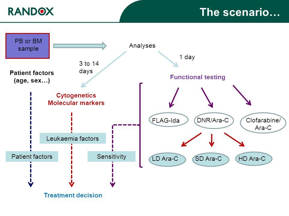 The scenario… PB or BM sample Analyses Cytogenetics Molecular markers Functional testing LD Ara-CSD Ara-CHD Ara-C Treatment decision 3 to 14 days 1 day Patient factors (age, sex…) Clofarabine/ Ara-C DNR/Ara-C FLAG-Ida Leukaemia factors Patient factorsSensitivity