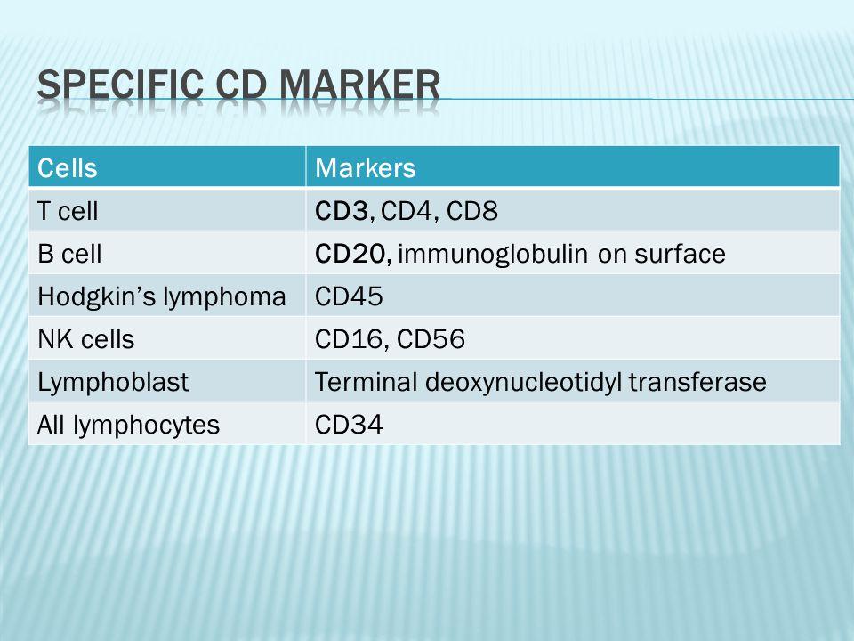 CellsMarkers T cellCD3, CD4, CD8 B cellCD20, immunoglobulin on surface Hodgkin's lymphomaCD45 NK cellsCD16, CD56 LymphoblastTerminal deoxynucleotidyl