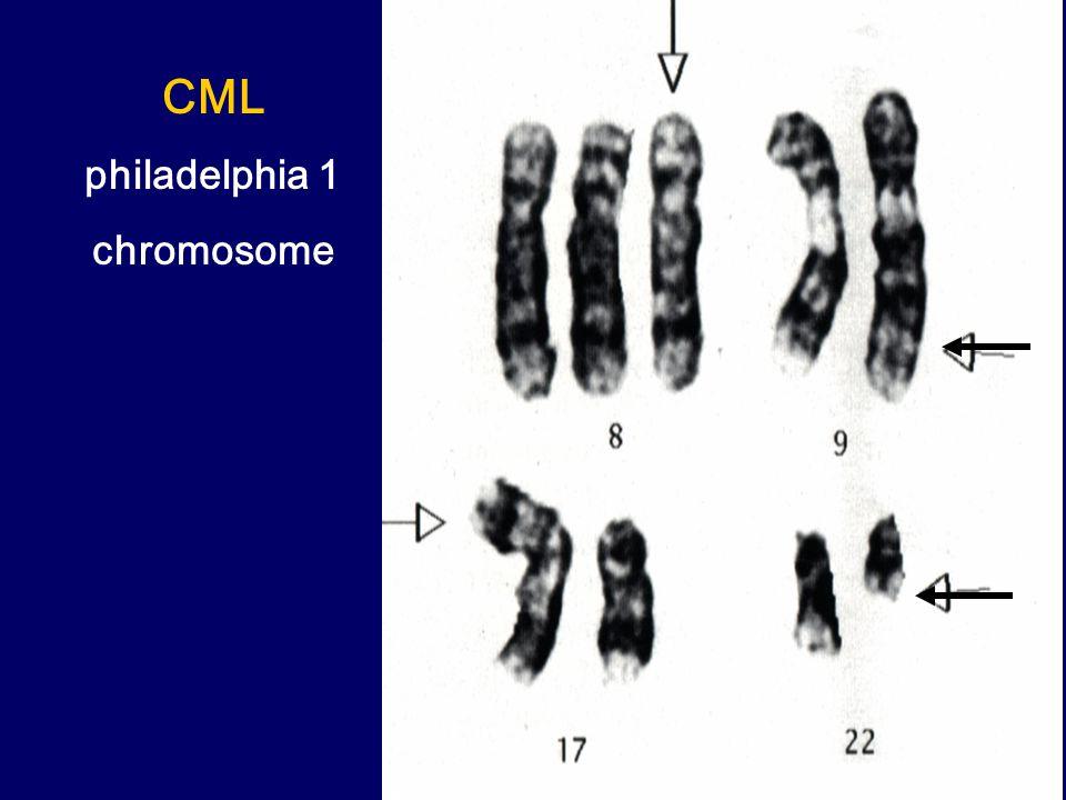 CML philadelphia 1 chromosome