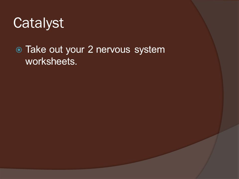 Catalyst  Take out your 2 nervous system worksheets.