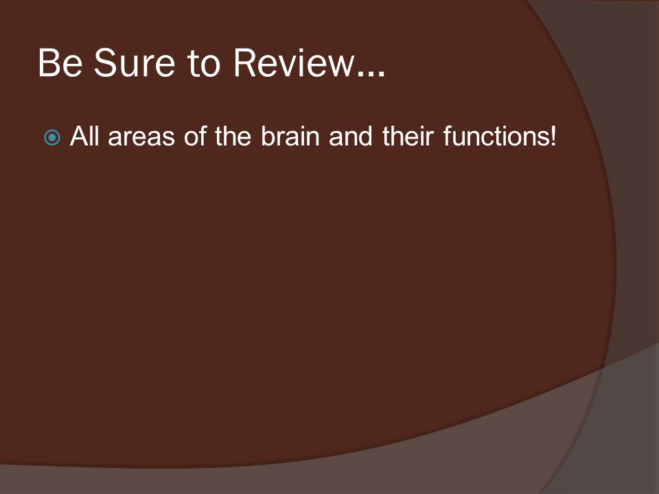 Be Sure to Review…  All areas of the brain and their functions!