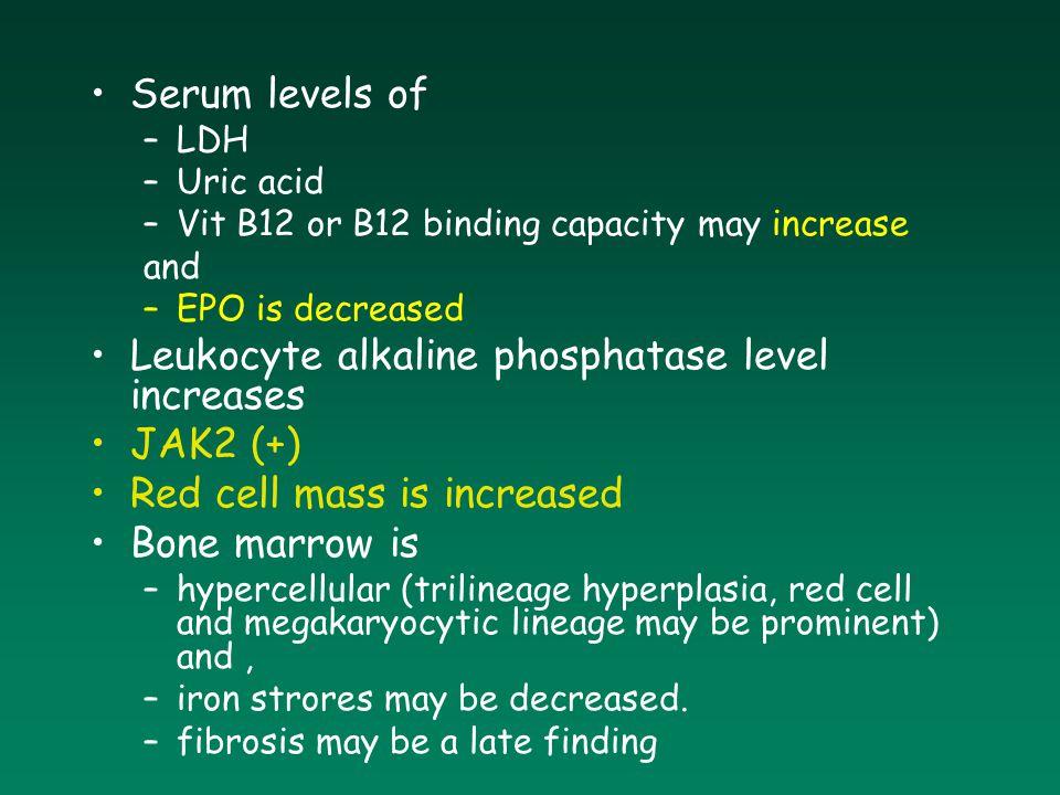 Serum levels of –LDH –Uric acid –Vit B12 or B12 binding capacity may increase and –EPO is decreased Leukocyte alkaline phosphatase level increases JAK