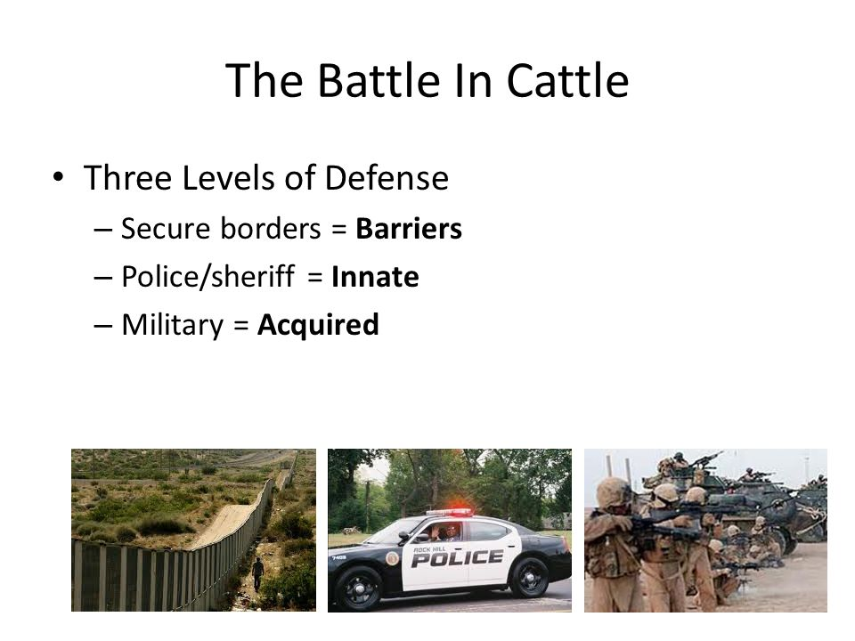 The Battle In Cattle Three Levels of Defense – Secure borders = Barriers – Police/sheriff = Innate – Military = Acquired