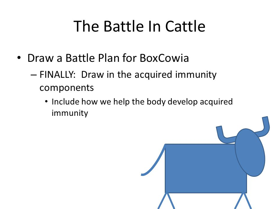 The Battle In Cattle Draw a Battle Plan for BoxCowia – FINALLY: Draw in the acquired immunity components Include how we help the body develop acquired