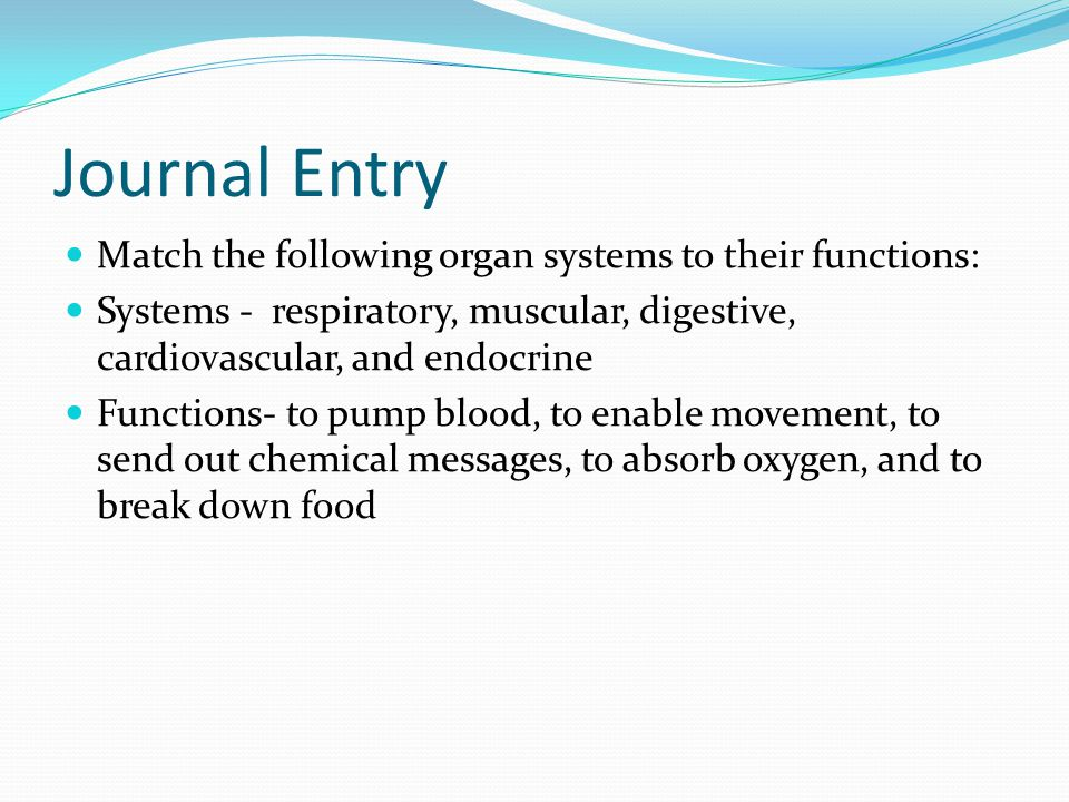 Journal Entry Match the following organ systems to their functions: Systems - respiratory, muscular, digestive, cardiovascular, and endocrine Function