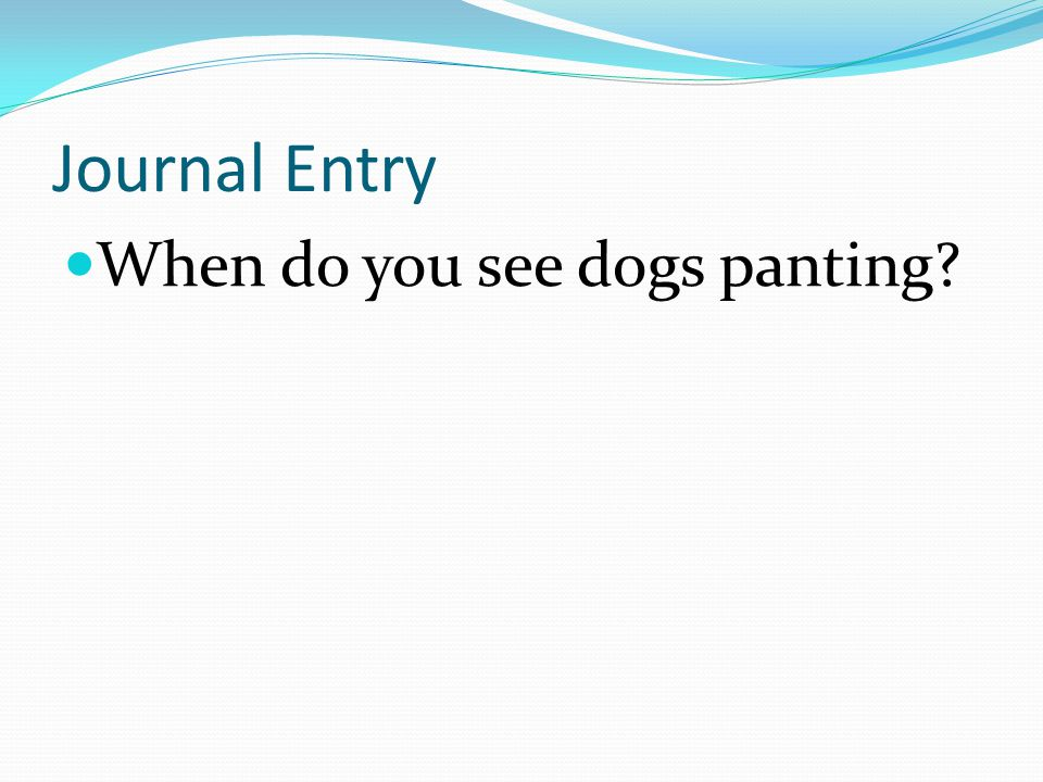 Journal Entry When do you see dogs panting?