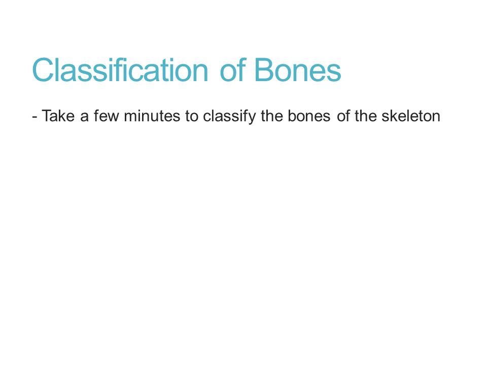 Classification of Bones - Take a few minutes to classify the bones of the skeleton