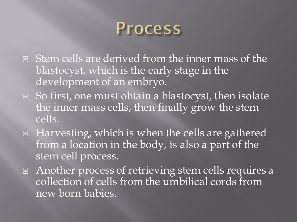  Stem cells are derived from the inner mass of the blastocyst, which is the early stage in the development of an embryo.