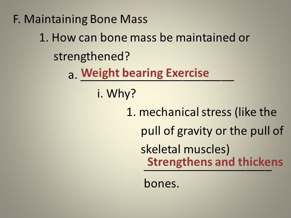 F. Maintaining Bone Mass 1. How can bone mass be maintained or strengthened.