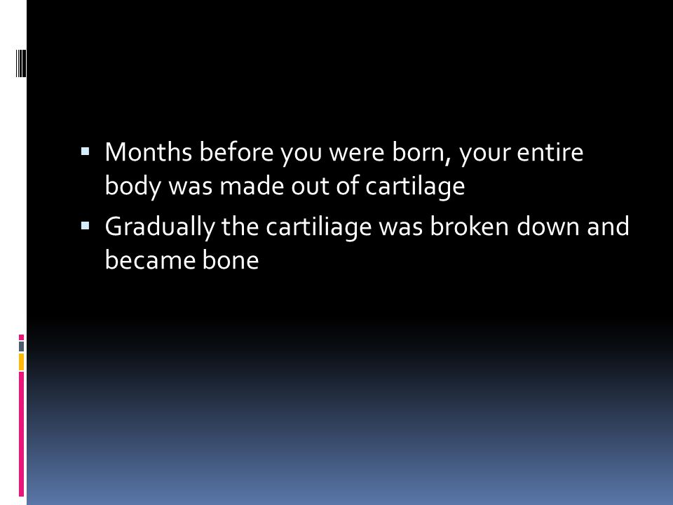 Months before you were born, your entire body was made out of cartilage  Gradually the cartiliage was broken down and became bone