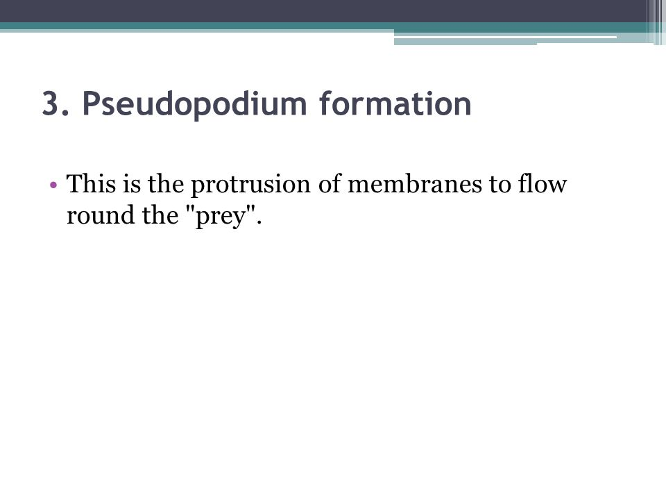 3. Pseudopodium formation This is the protrusion of membranes to flow round the
