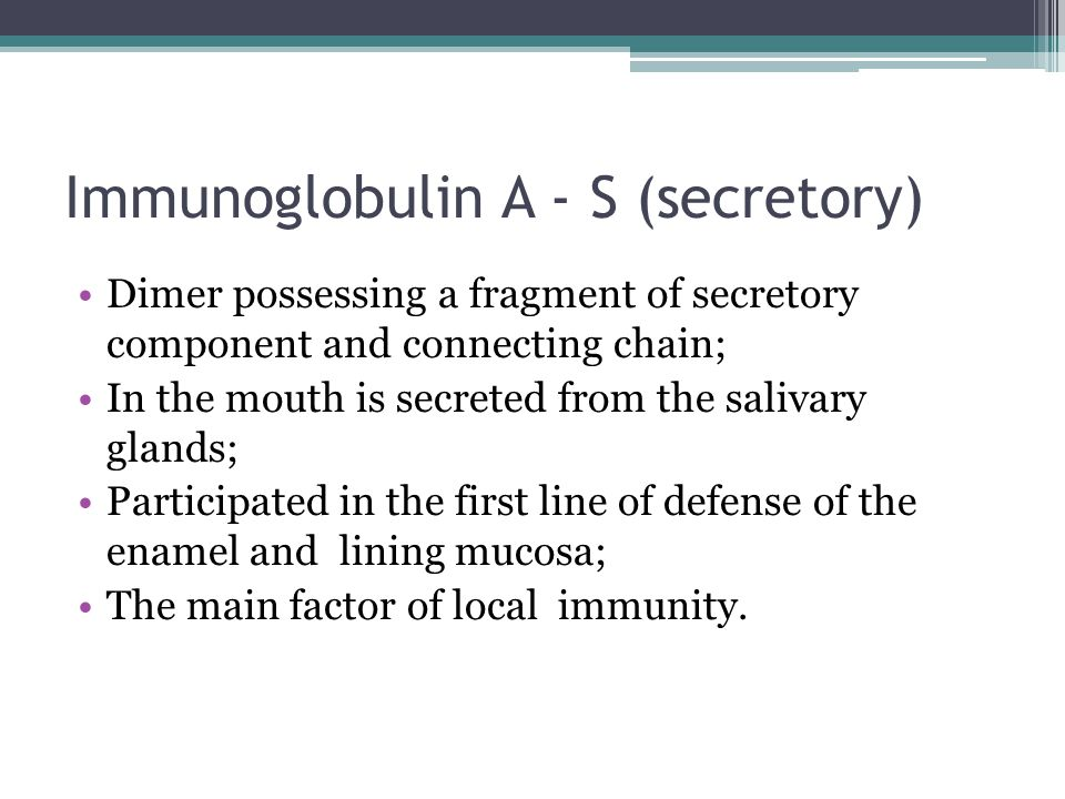 Immunoglobulin A - S (secretory) Dimer possessing a fragment of secretory component and connecting chain; In the mouth is secreted from the salivary g