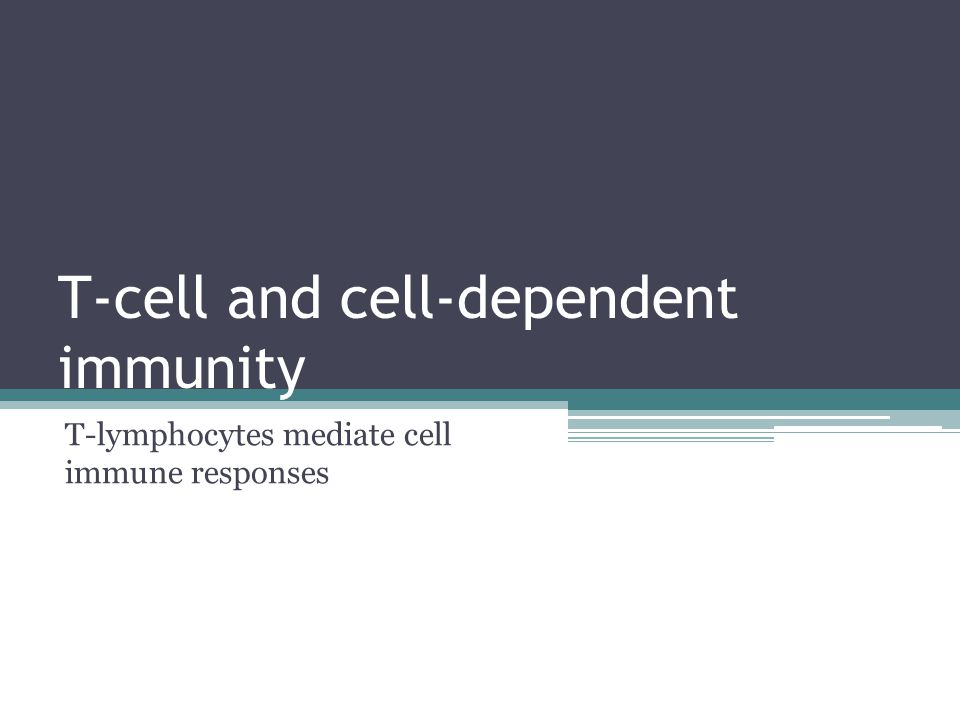 T-cell and cell-dependent immunity T-lymphocytes mediate cell immune responses