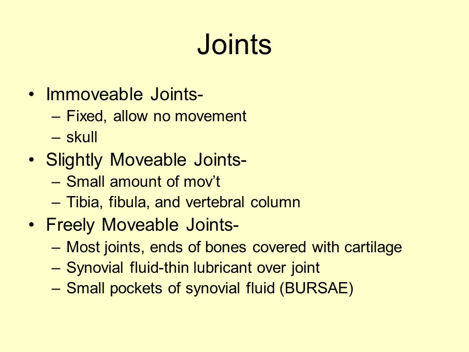 Joints Immoveable Joints- –Fixed, allow no movement –skull Slightly Moveable Joints- –Small amount of mov't –Tibia, fibula, and vertebral column Freel