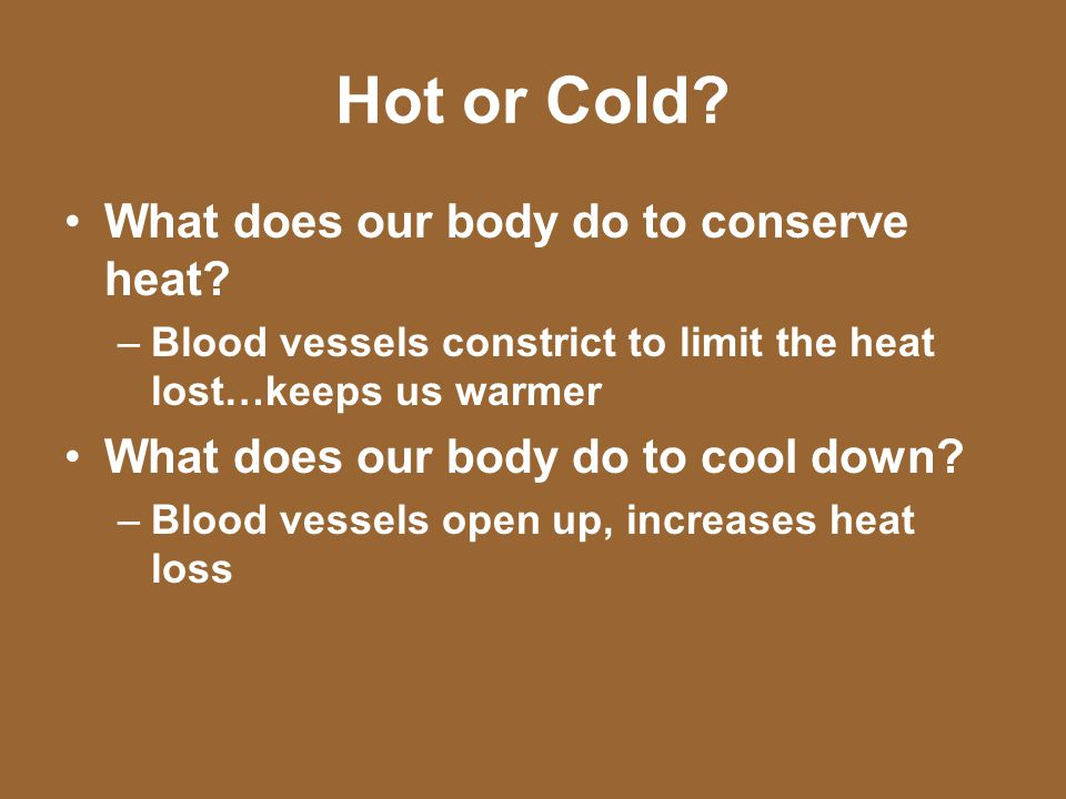 Hot or Cold? What does our body do to conserve heat? –Blood vessels constrict to limit the heat lost…keeps us warmer What does our body do to cool dow