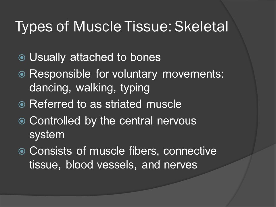 Types of Muscle Tissue: Skeletal  Usually attached to bones  Responsible for voluntary movements: dancing, walking, typing  Referred to as striated