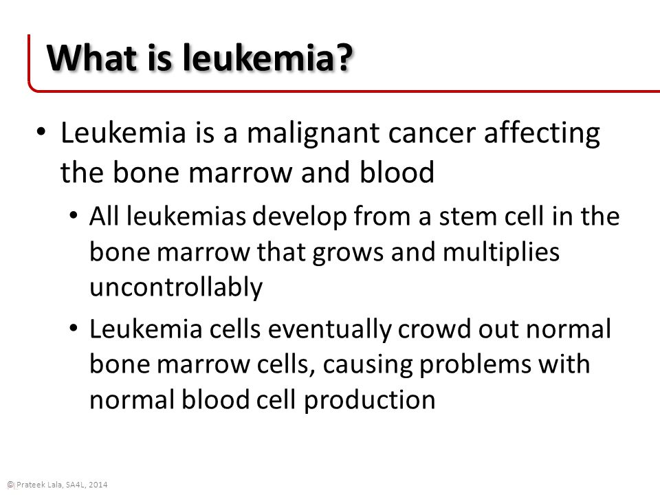 PL © Prateek Lala, SA4L, 2014 Leukemia types The four most common types of leukemia in adults are: acute myelogenous leukemia (AML) acute lymphocytic leukemia (ALL) chronic myelogenous leukemia (CML) chronic lymphocytic leukemia (CLL) Acute leukemias progress more rapidly, and must be treated more urgently CCS, 2010