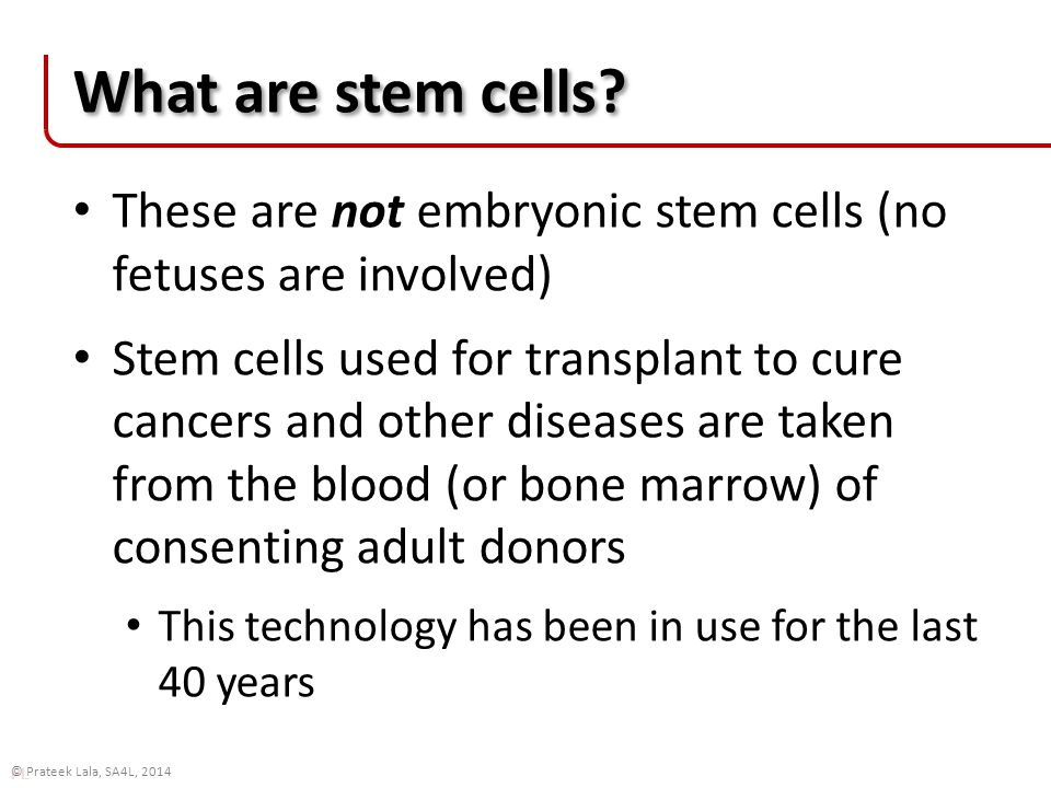 PL © Prateek Lala, SA4L, 2014 Patient transplant Harvested stem cells are filtered, and given to the patient intravenously Emru Townsend www.healemru.com