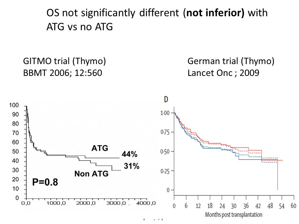GITMO trial (Thymo) BBMT 2006; 12:560 German trial (Thymo) Lancet Onc ; 2009 OS not significantly different (not inferior) with ATG vs no ATG