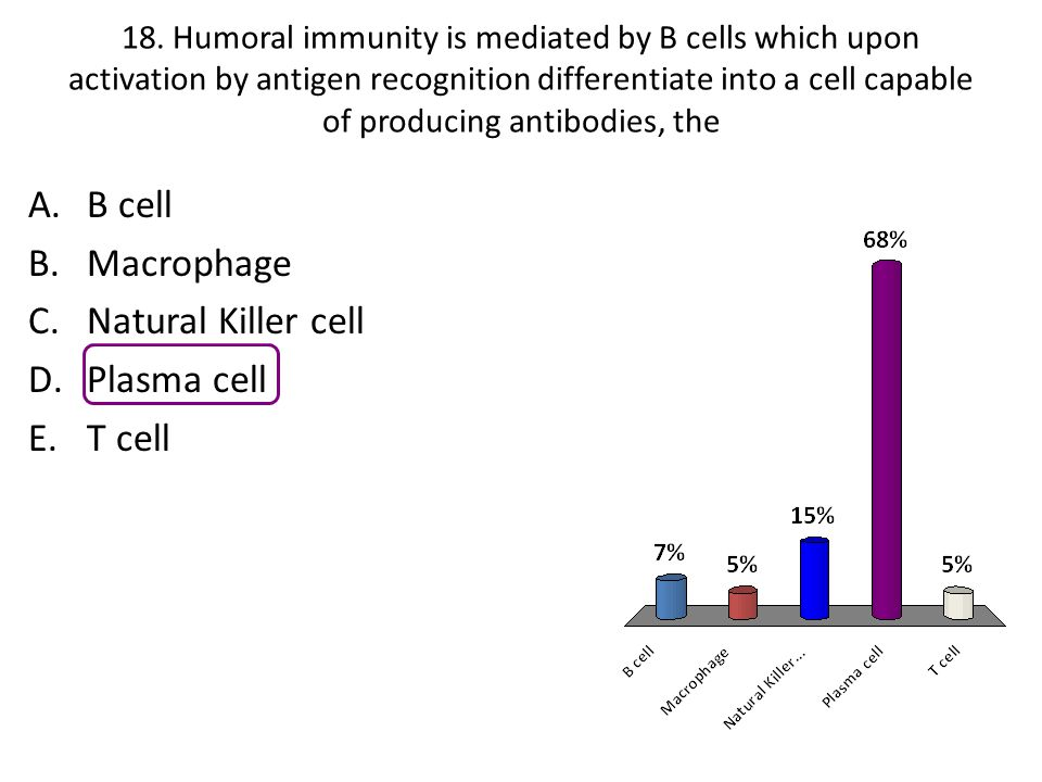 18. Humoral immunity is mediated by B cells which upon activation by antigen recognition differentiate into a cell capable of producing antibodies, th