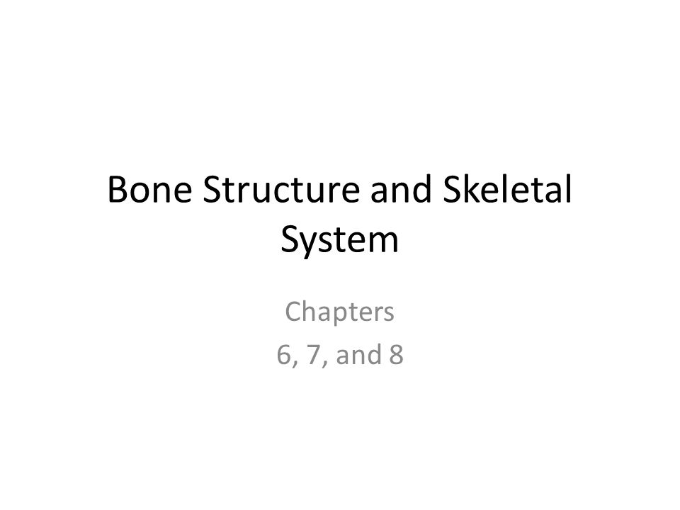 Bone Structure and Skeletal System Chapters 6, 7, and 8