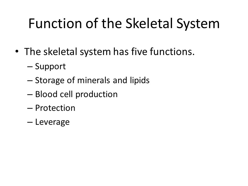 Function of the Skeletal System The skeletal system has five functions. – Support – Storage of minerals and lipids – Blood cell production – Protectio