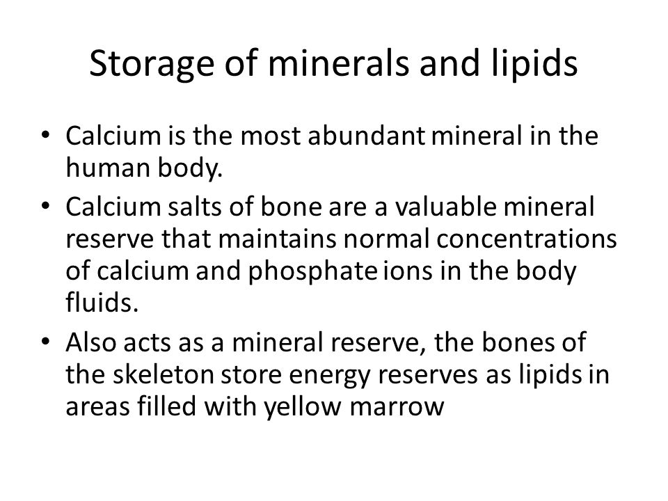 Storage of minerals and lipids Calcium is the most abundant mineral in the human body. Calcium salts of bone are a valuable mineral reserve that maint