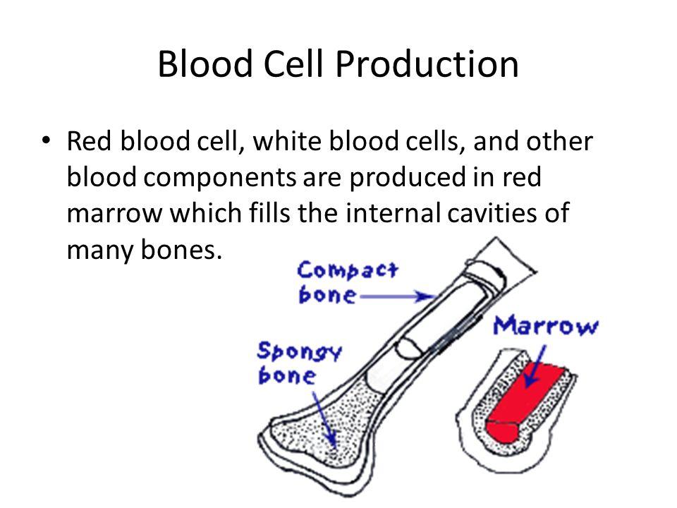 Factors That Decrease Blood Calcium