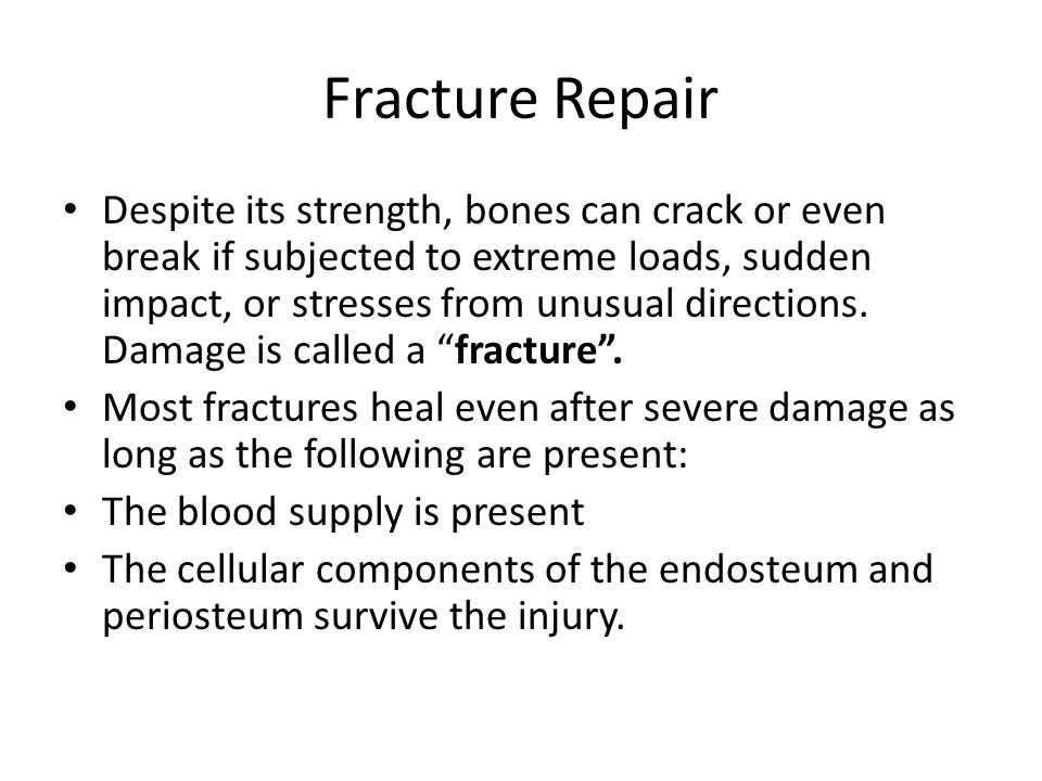 Fracture Repair Despite its strength, bones can crack or even break if subjected to extreme loads, sudden impact, or stresses from unusual directions.