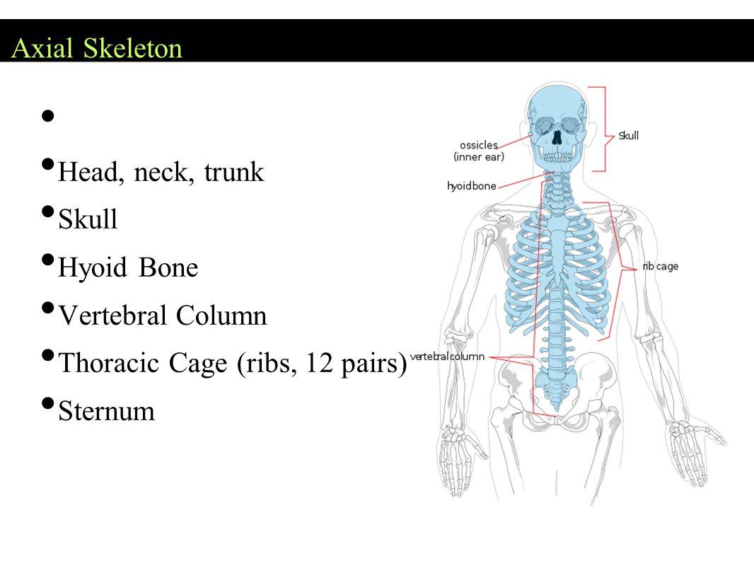 Osteoporosis Figure 6.15