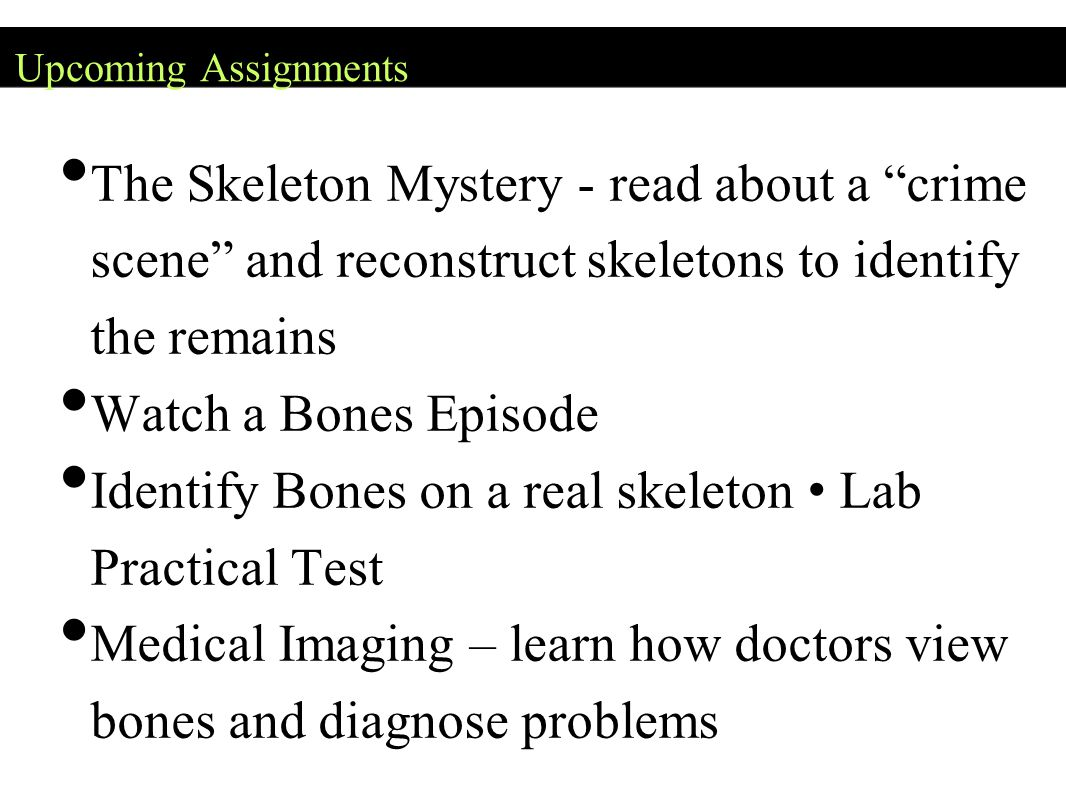 """Upcoming Assignments The Skeleton Mystery - read about a """"crime scene"""" and reconstruct skeletons to identify the remains Watch a Bones Episode Identif"""
