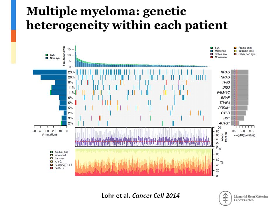 Multiple myeloma: genetic heterogeneity within each patient Lohr et al. Cancer Cell 2014