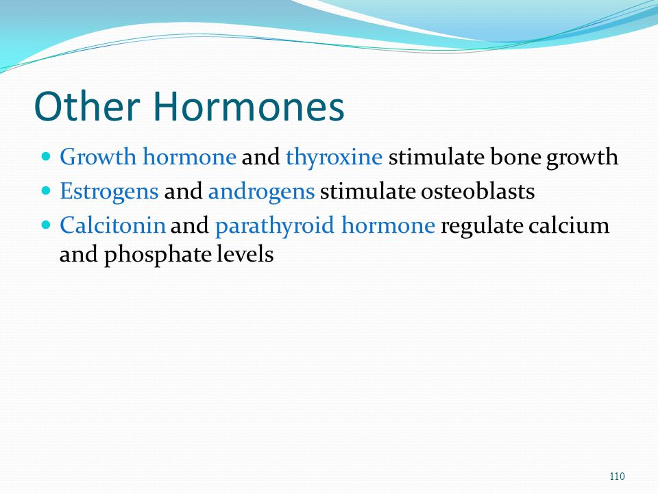 Other Hormones Growth hormone and thyroxine stimulate bone growth Estrogens and androgens stimulate osteoblasts Calcitonin and parathyroid hormone reg