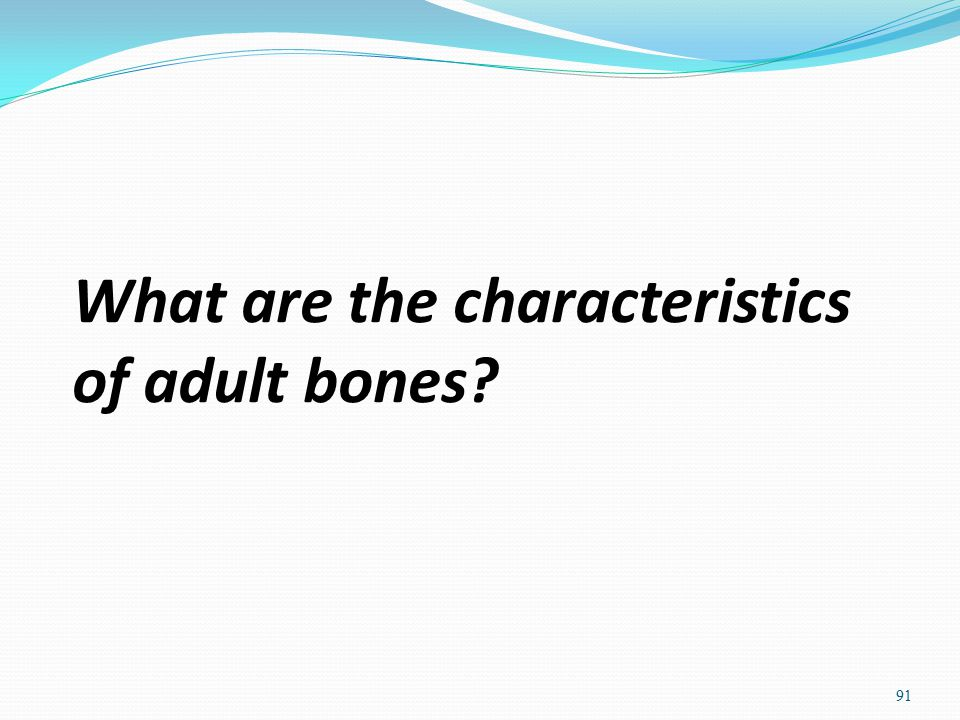 What are the characteristics of adult bones? 91