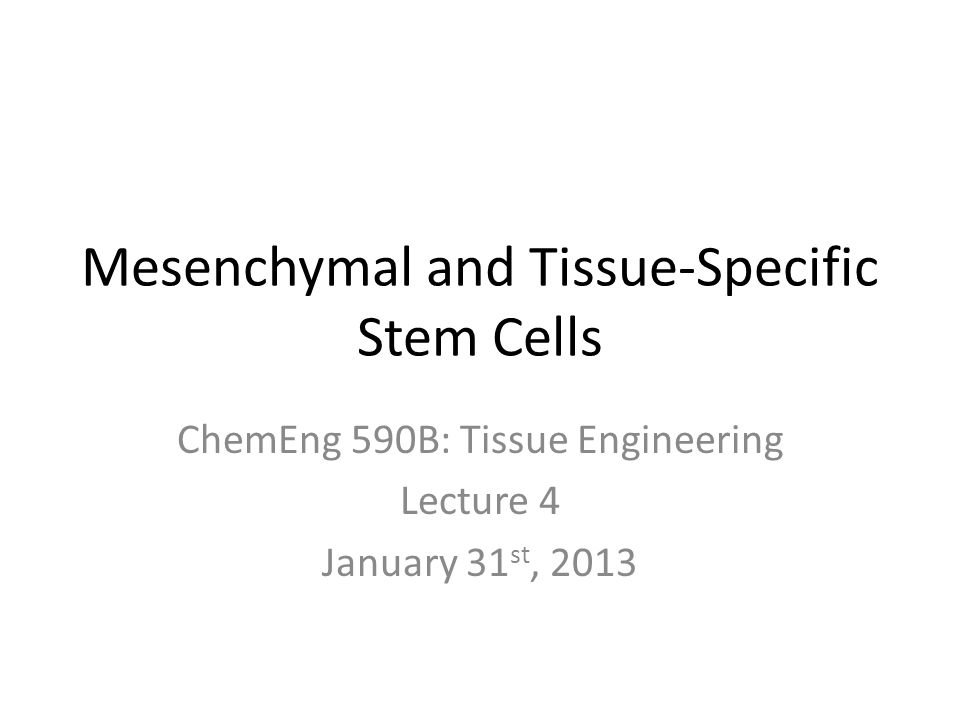 Mesenchymal and Tissue-Specific Stem Cells ChemEng 590B: Tissue Engineering Lecture 4 January 31 st, 2013