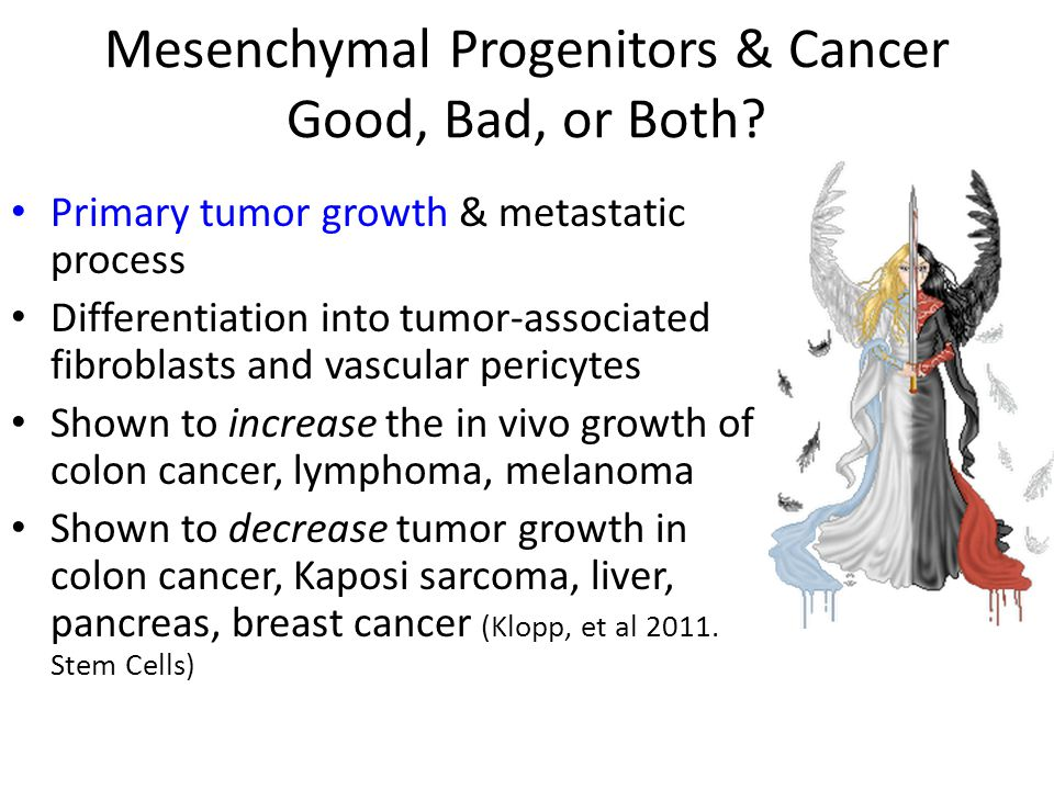 Mesenchymal Progenitors & Cancer Good, Bad, or Both? Primary tumor growth & metastatic process Differentiation into tumor-associated fibroblasts and v