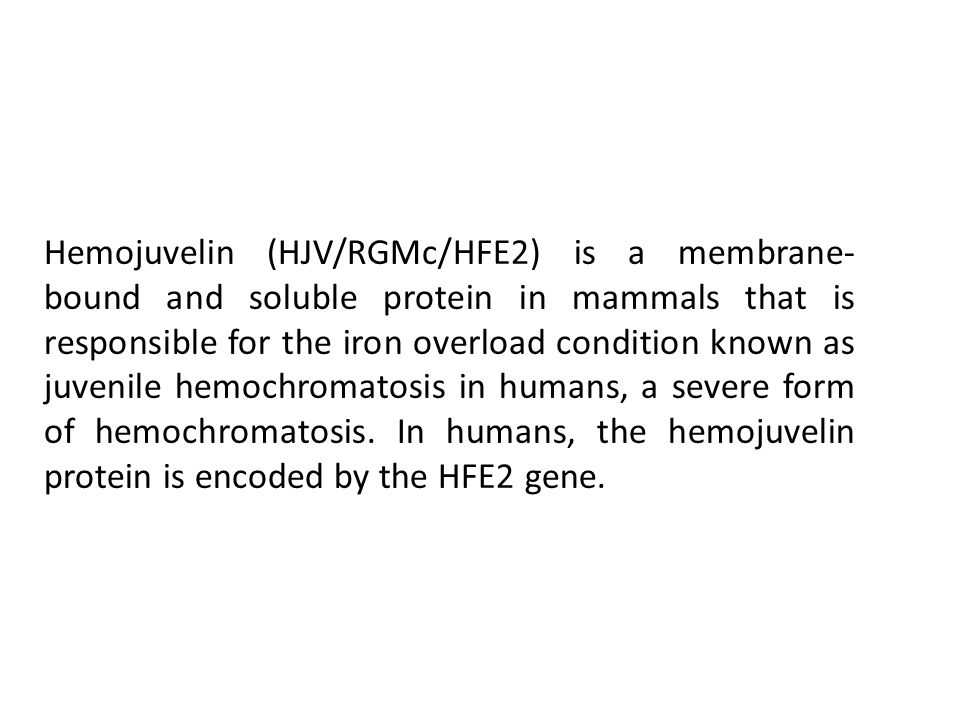 Hemojuvelin (HJV/RGMc/HFE2) is a membrane- bound and soluble protein in mammals that is responsible for the iron overload condition known as juvenile hemochromatosis in humans, a severe form of hemochromatosis.
