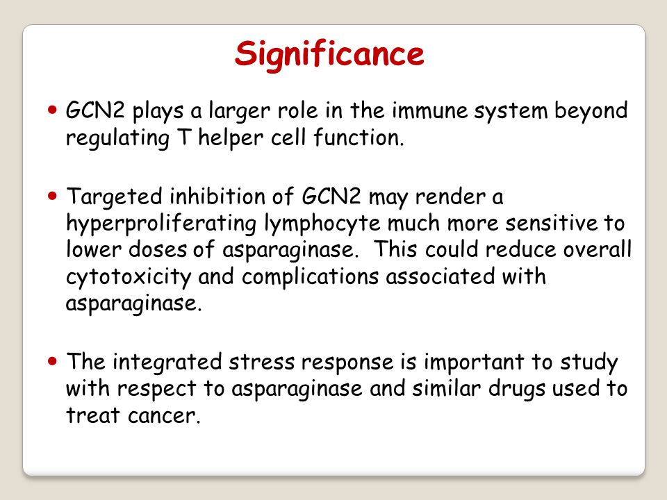 Significance GCN2 plays a larger role in the immune system beyond regulating T helper cell function.