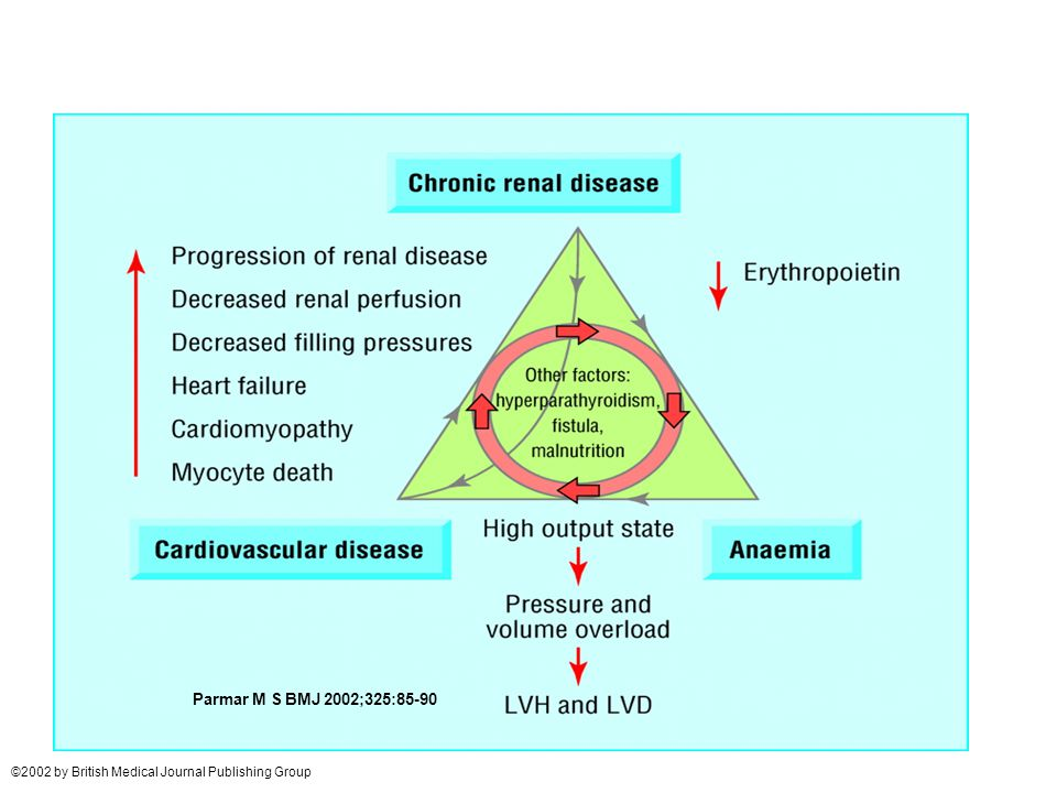 Perpetuating triad of chronic kidney disease, anaemia, and cardiovascular disease Parmar M S BMJ 2002;325:85-90 ©2002 by British Medical Journal Publi