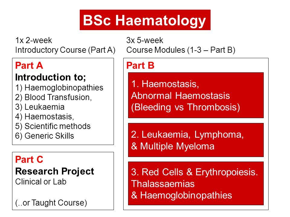 Part A Introduction to; 1) Haemoglobinopathies 2) Blood Transfusion, 3) Leukaemia 4) Haemostasis, 5) Scientific methods 6) Generic Skills 3.
