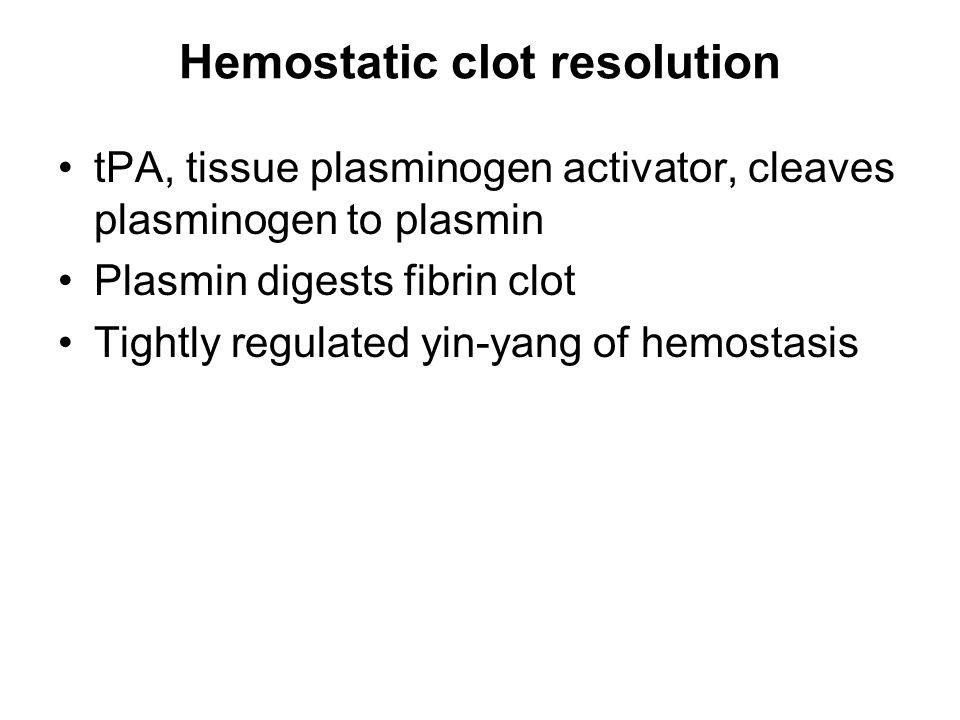 Hemostatic clot resolution tPA, tissue plasminogen activator, cleaves plasminogen to plasmin Plasmin digests fibrin clot Tightly regulated yin-yang of hemostasis