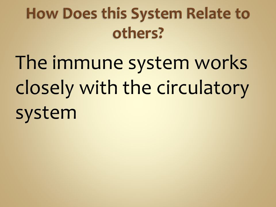 The immune system works closely with the circulatory system