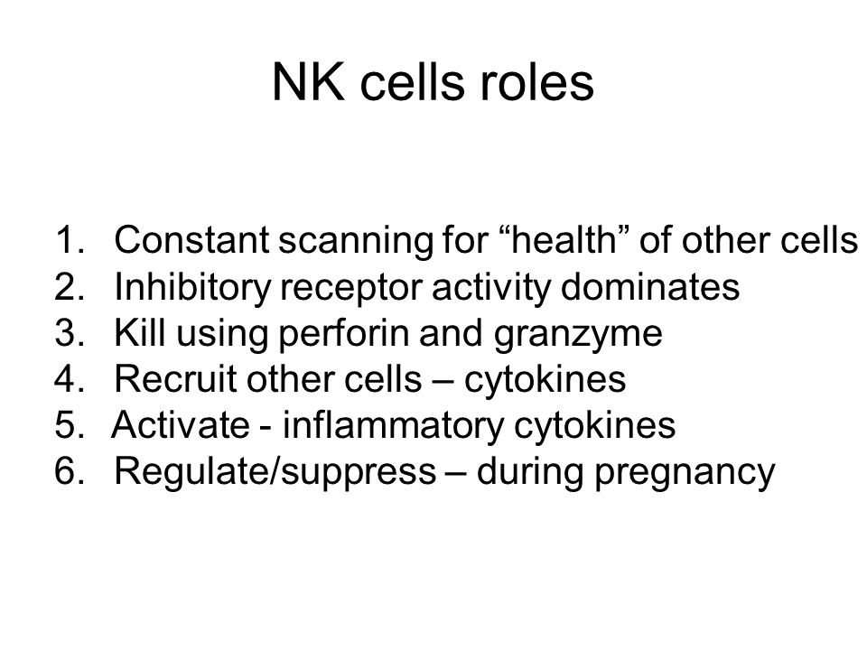 """NK cells roles 1. Constant scanning for """"health"""" of other cells 2. Inhibitory receptor activity dominates 3. Kill using perforin and granzyme 4. Recru"""