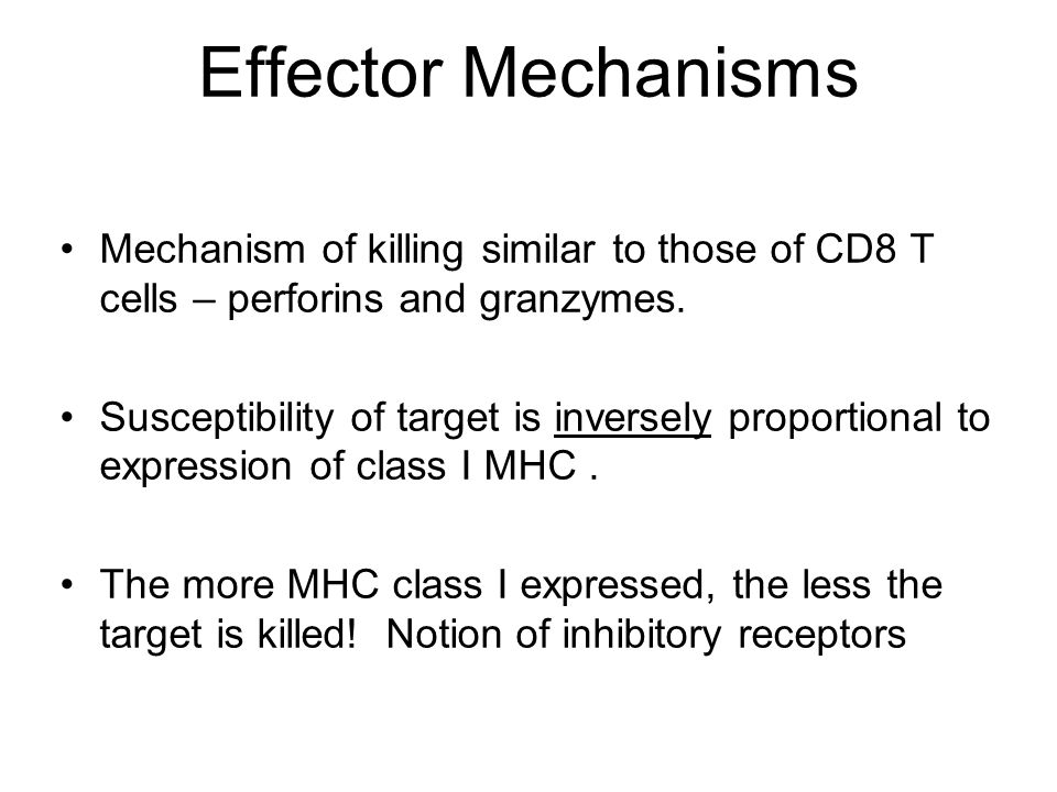 Effector Mechanisms Mechanism of killing similar to those of CD8 T cells – perforins and granzymes. Susceptibility of target is inversely proportional