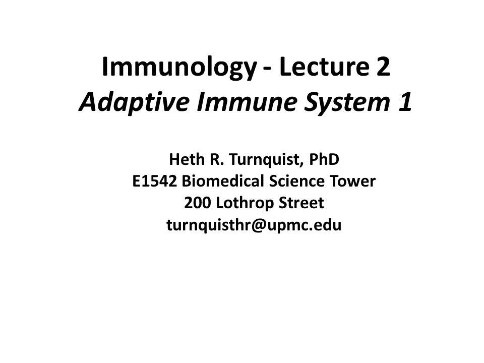 Immunology - Lecture 2 Adaptive Immune System 1 Heth R. Turnquist, PhD E1542 Biomedical Science Tower 200 Lothrop Street turnquisthr@upmc.edu