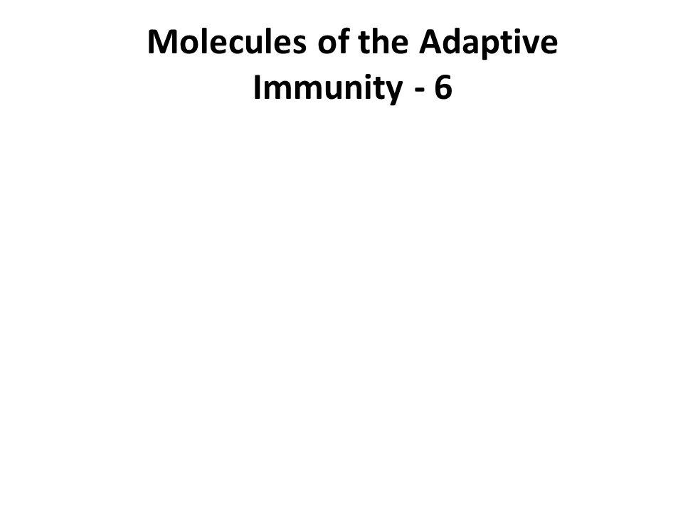 Molecules of the Adaptive Immunity - 6