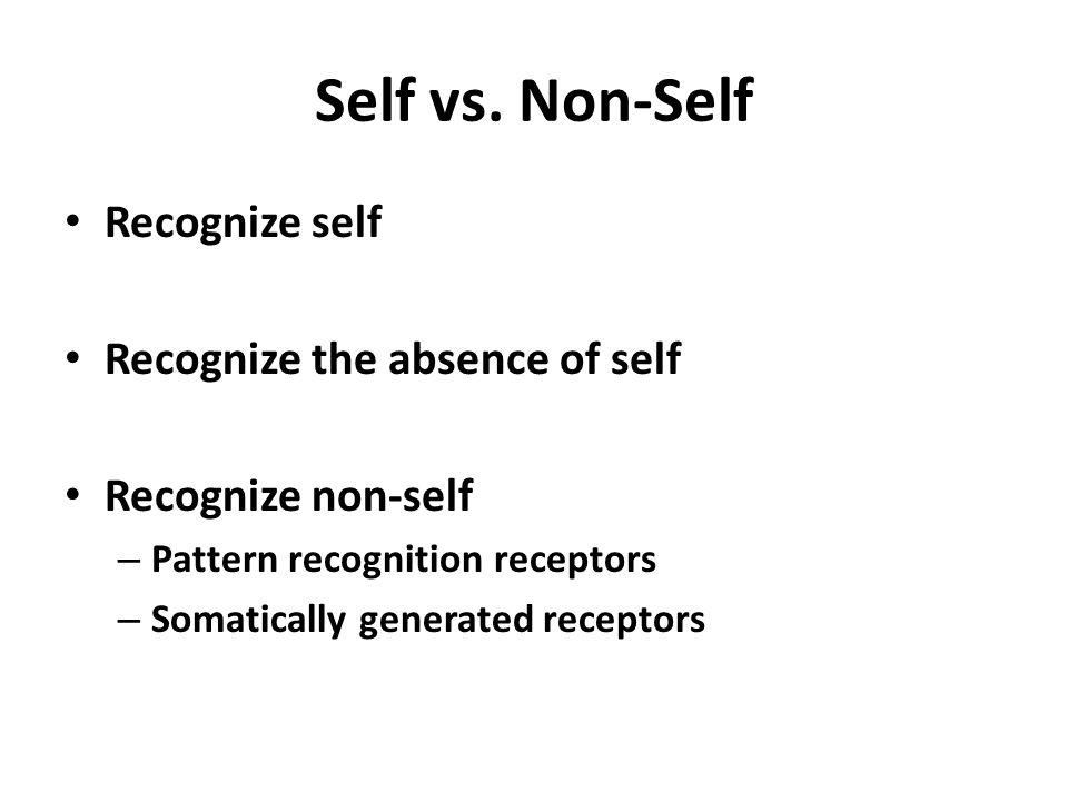 Self vs. Non-Self Recognize self Recognize the absence of self Recognize non-self – Pattern recognition receptors – Somatically generated receptors