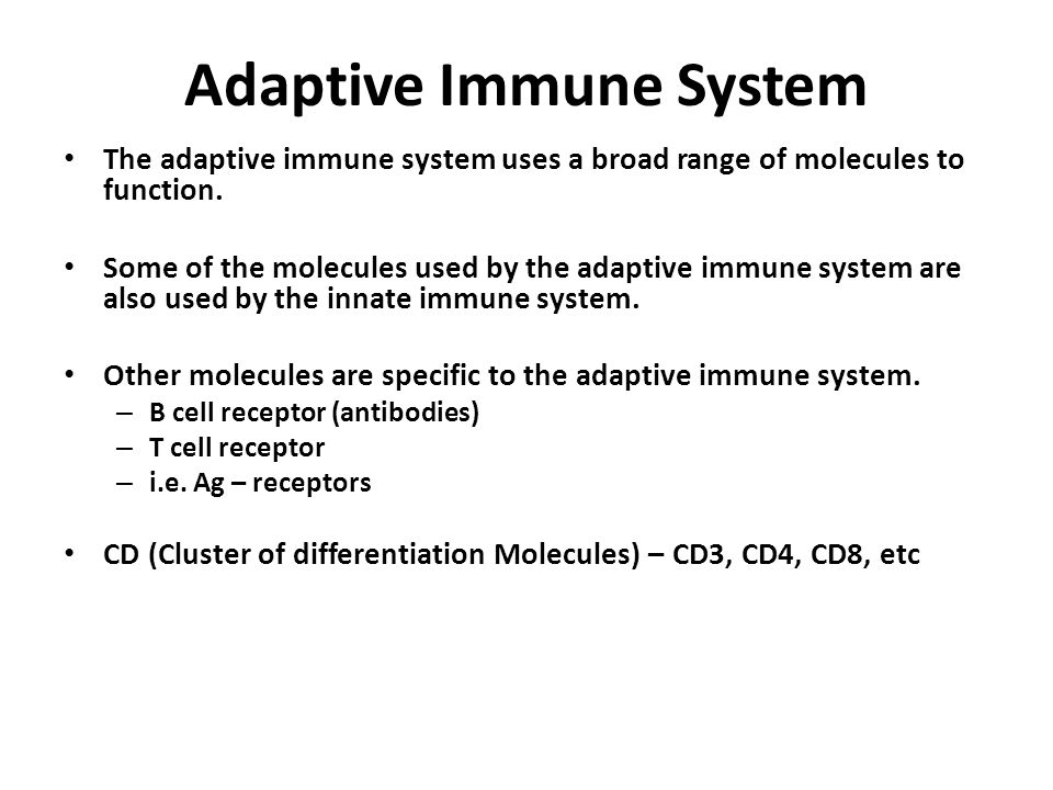 Adaptive Immune System The adaptive immune system uses a broad range of molecules to function. Some of the molecules used by the adaptive immune syste