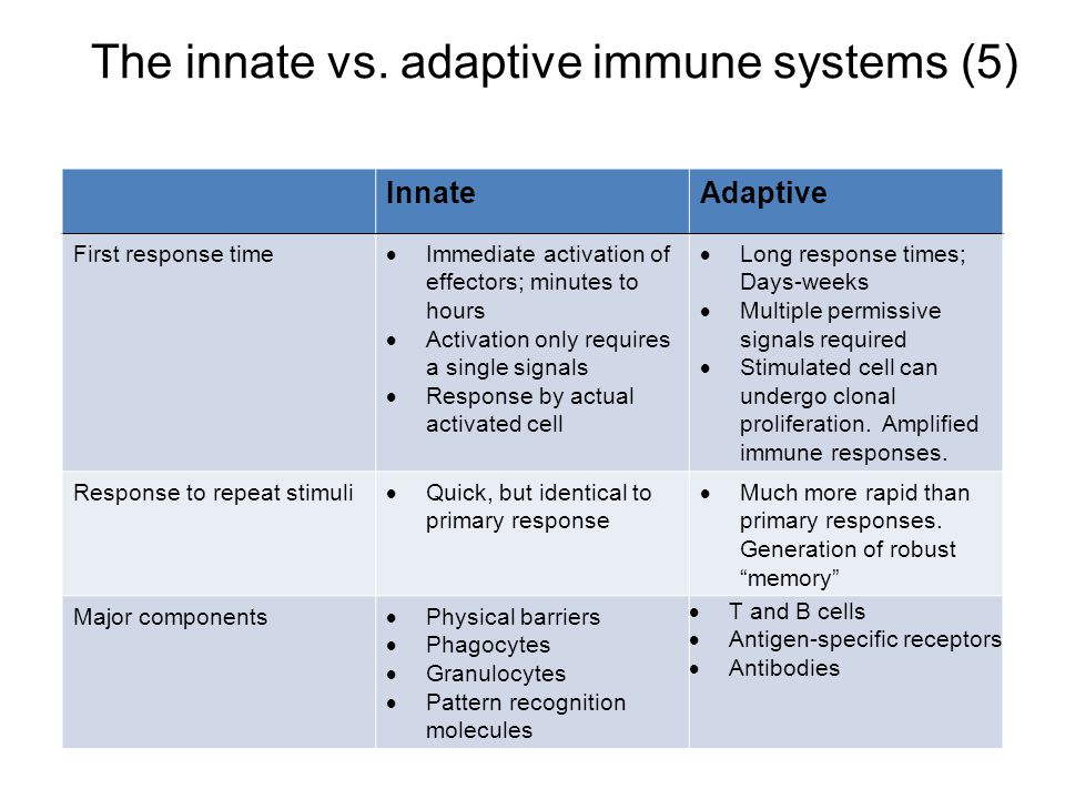 The innate vs. adaptive immune systems (5) InnateAdaptive First response time  Immediate activation of effectors; minutes to hours  Activation only